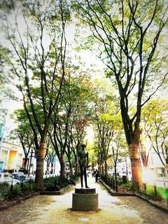 11月の定禅寺通りの欅並木の写真・画像素材[2685223]