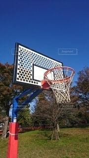 紅葉とバスケットゴール(縦長)の写真・画像素材[3888912]
