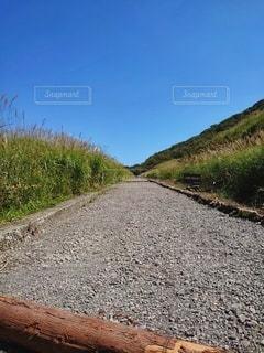 すすき道の写真・画像素材[2607738]