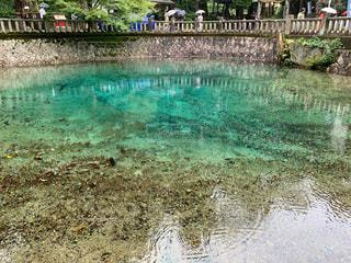 水域の隣のプールの写真・画像素材[2508246]