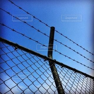 柵の向こう側の写真・画像素材[2785996]