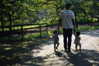 手を繋いで歩く親子の写真・画像素材[2509134]