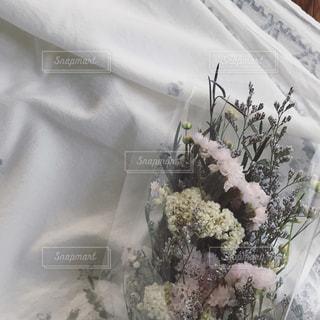 花のクローズアップの写真・画像素材[2510284]