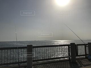新舞子マリンパークの釣りの写真・画像素材[3039652]