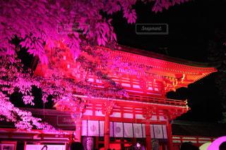 下鴨神社ライトアップの写真・画像素材[2514479]