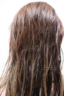 お風呂上がりの濡れた髪の写真・画像素材[2574276]
