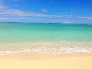 ハワイの写真・画像素材[2607162]