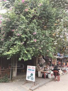 ベトナムの写真・画像素材[2848164]