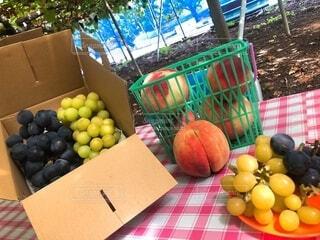 テーブルの上の果物の写真・画像素材[3663599]