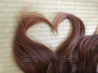 茶色い髪の女性の写真・画像素材[2556956]