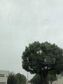 台風の中仕事の写真・画像素材[2581528]