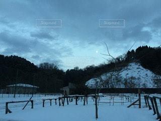 冬の写真・画像素材[97016]