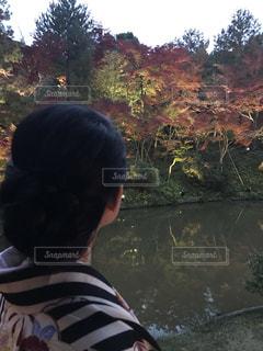 秋の京都の写真・画像素材[2567938]