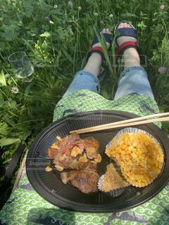 ピクニックでステーキ!!の写真・画像素材[3799206]