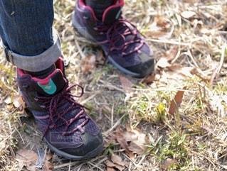 草の上の靴のグループの写真・画像素材[2789733]