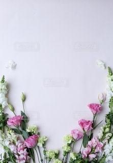 紫色の花で満たされた花瓶の写真・画像素材[2791401]