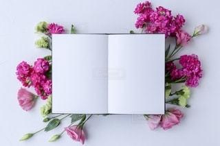 ピンクの花束の写真・画像素材[2791402]
