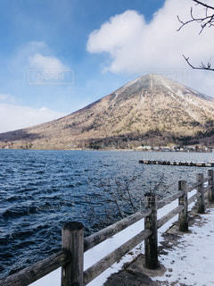 雪の中の写真・画像素材[2539529]