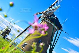 オランダ風車の写真・画像素材[2611665]