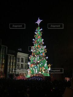 クリスマスツリーの写真・画像素材[2545853]