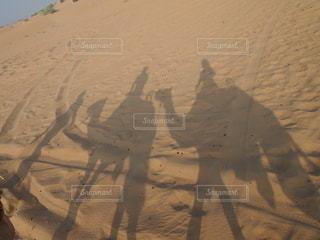 ラクダの写真・画像素材[2641189]