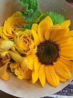 花の写真・画像素材[97498]
