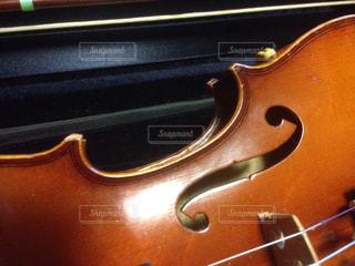 バイオリンの写真・画像素材[310751]