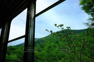 箱根登山鉄道の車窓からの写真・画像素材[2607832]
