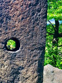 穴の向こうの写真・画像素材[2639945]