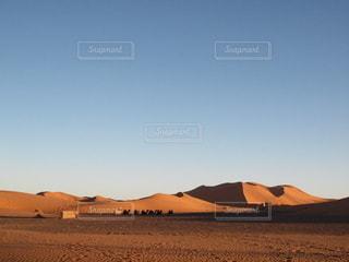 サハラ砂漠の写真・画像素材[2645990]