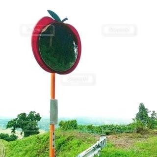 りんごカーブミラーの写真・画像素材[2577055]