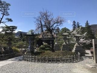 善光寺の灯篭のある庭園の写真・画像素材[1374836]