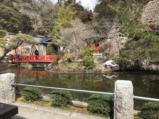 川に架かる橋 弁財天様の庭園 白蛇のオブジェの写真・画像素材[1374951]
