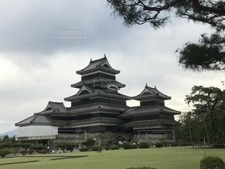 松本城の写真・画像素材[1460896]