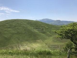 緑豊かな丘陵地帯のクローズアップの写真・画像素材[2538421]
