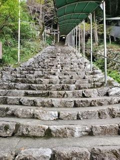 階段の写真・画像素材[2742364]