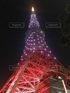 夜の東京タワーの写真・画像素材[2549186]