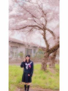 春の写真・画像素材[2576238]