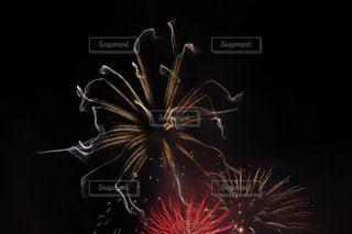 空の花火の写真・画像素材[2537362]