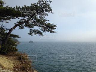 松島 海の写真・画像素材[2538624]