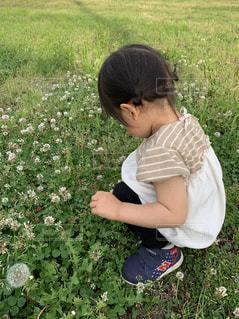 草原の少女の写真・画像素材[2540576]