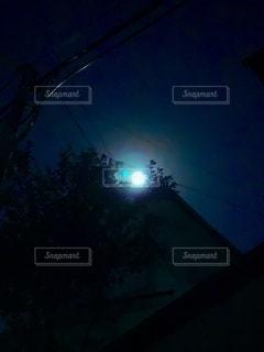月夜の散歩の写真・画像素材[2615215]