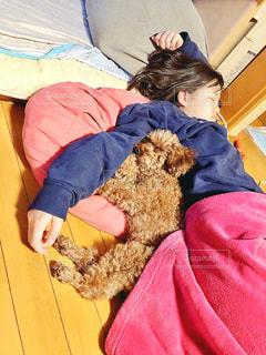 テディベアとベッドで寝ている子供の写真・画像素材[2917785]