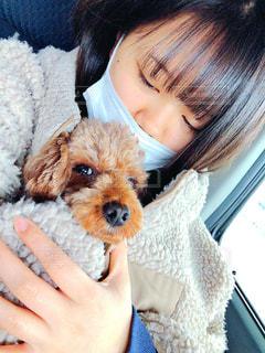 犬を飼っている女性の写真・画像素材[2998026]