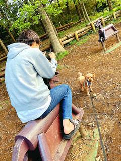 動物園に座っている人の写真・画像素材[3118675]
