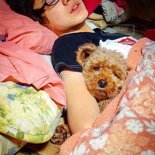 ぬいぐるみでベッドに座っている人の写真・画像素材[3118676]