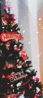 クリスマスツリーの写真・画像素材[2669269]