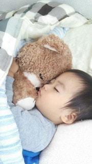 ぬいぐるみを抱いて寝る子供の写真・画像素材[2544514]