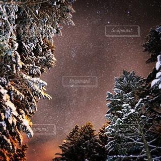 夜景の写真・画像素材[98905]