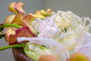 花の写真・画像素材[143149]